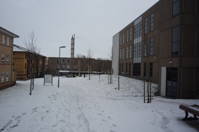 Alcuin College in Snow