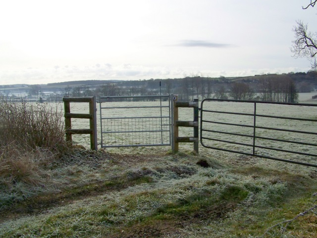 Bridleway gate, Tarrant Crawford
