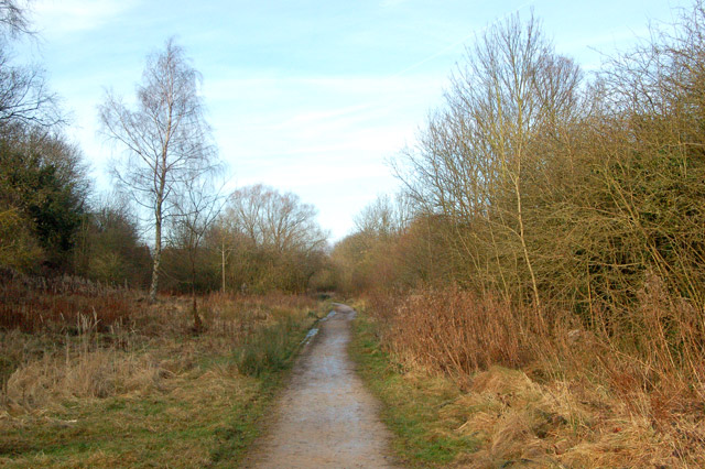 Looking north along trackbed of ex-Great Central Railway, Rugby