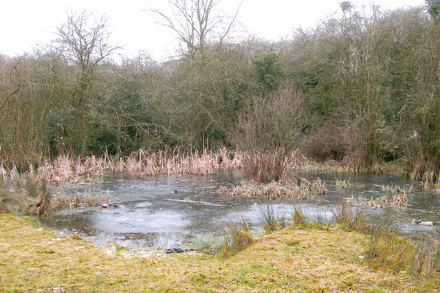 Icy pond beside trackbed of ex-Great Central Railway, Rugby