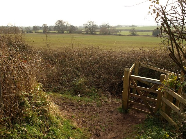 Footpath junction below Durleigh Road