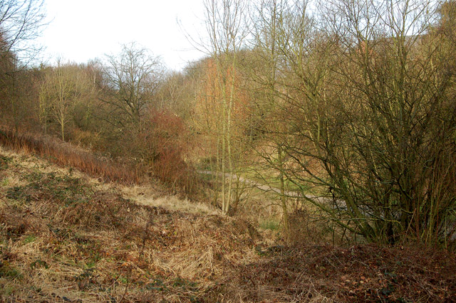 View from Hillmorton Road down to the ex-Great Central Railway trackbed