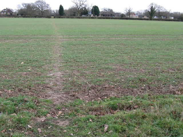 Footpath to Purveyor's Farm