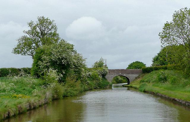 Shropshire Union Canal near Nantwich, Cheshire
