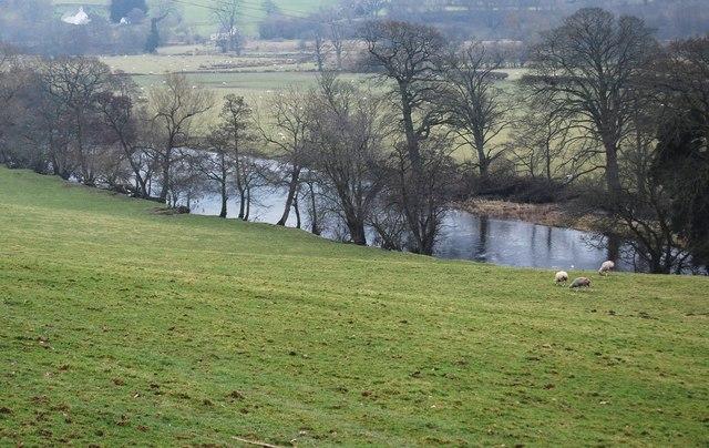 Afon Dyfrdwy at Gwerclas