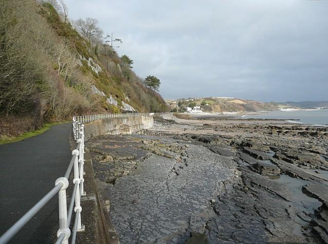 The coastal cycleway, Saundersfoot