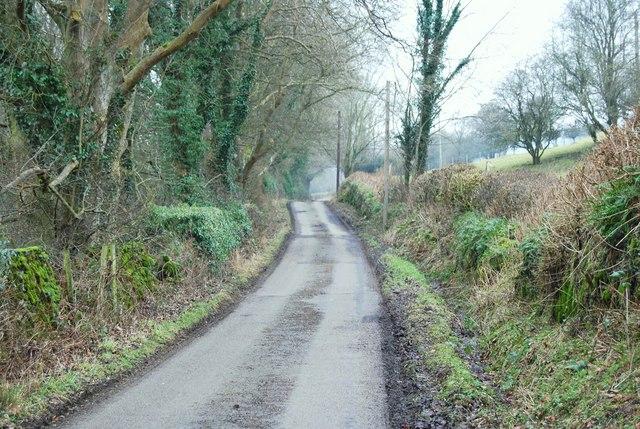 Lane to Llandderfel beside Gwerclas