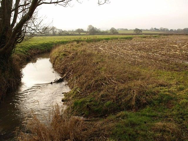 Durleigh Brook