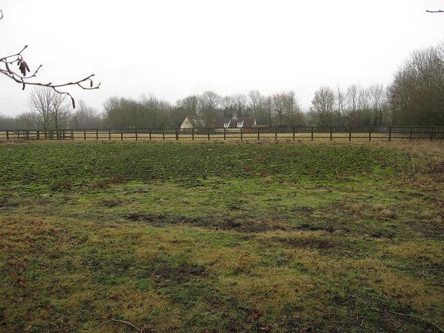 Old horse training area