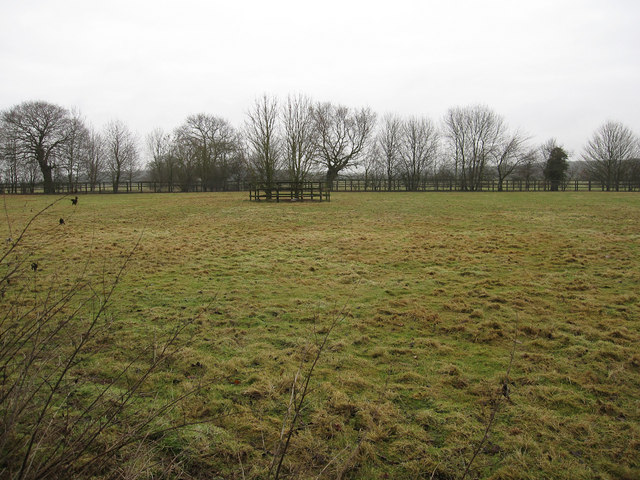 Horse paddock by Icknield Way