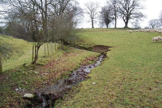 Stream heading towards Afon Dyfrdwy
