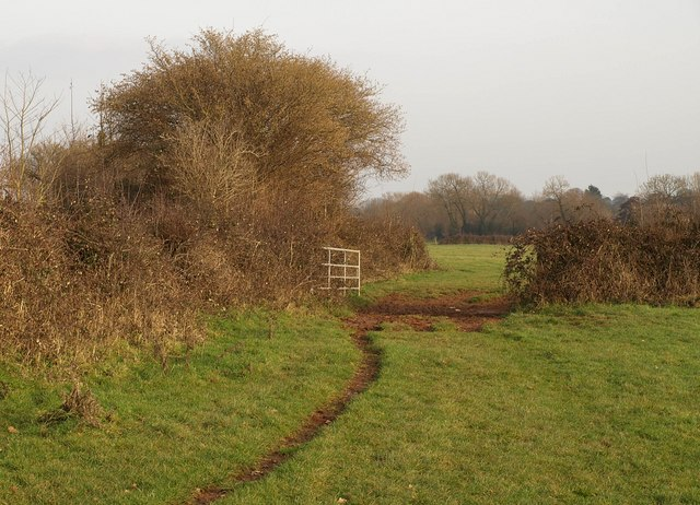Gateway, The Meads