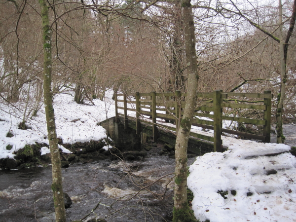 The First Footbridge, Hareshaw Linn Gorge