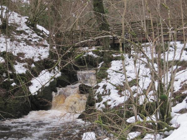 Waterfall on Hareshaw Linn
