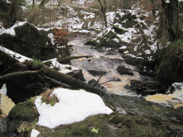 Hareshaw Burn above the Fourth Waterfall
