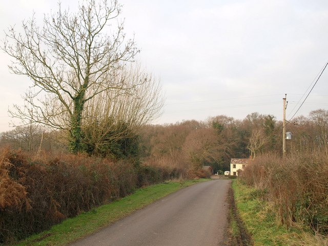 Lane at Blackmoor