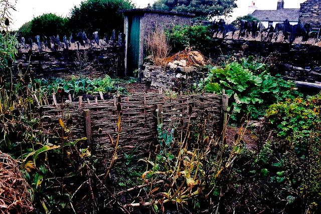 Cregneash Village - Cregneash Museum garden