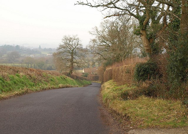 Lane near Glasses