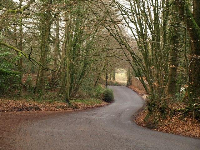 Lane on Wellington Hill