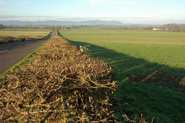 View to the Malvern Hills