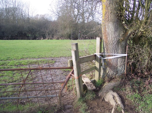 Stile strapped to a tree