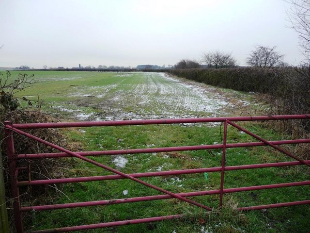 Gate into field, on the main road at Snydale