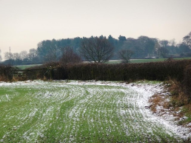 Field boundary outlined by snow and hedge, Snydale