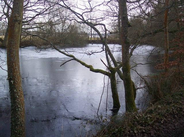 Frozen pond near Wat Stock