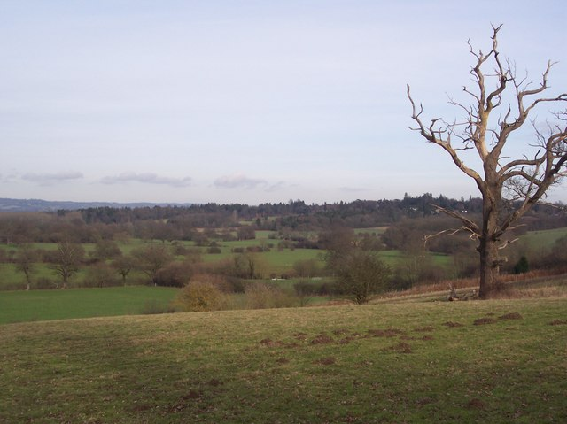 View of the River Eden Valley