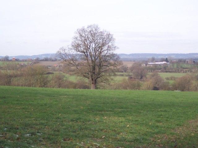 View towards Weller's Town
