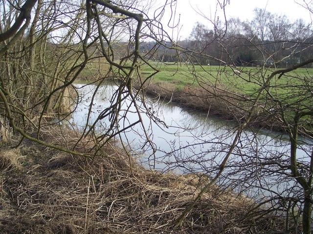 Stream near Penshurst Place