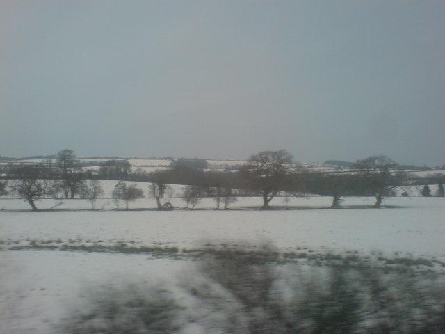 Snowy fields east of Clunderwen