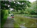 SJ6151 : Llangollen Canal near Burland, Cheshire by Roger  Kidd