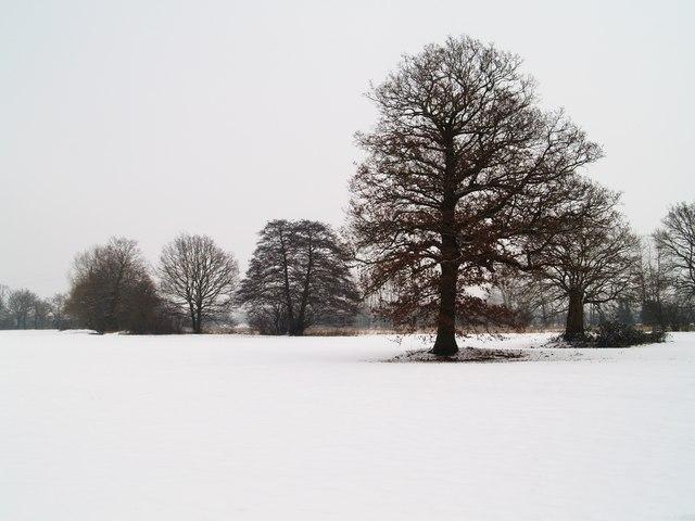 Hop Farm in the Snow