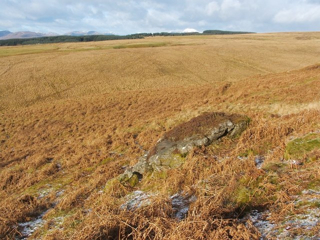 Cornstone outcrop