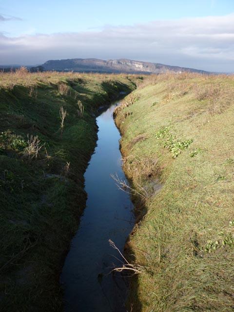 Tidal creek, Kent estuary by Fishcarling Head