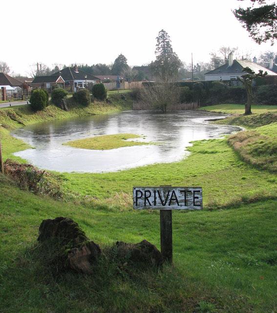 Pond by Laburnum Cottage in Green Lane
