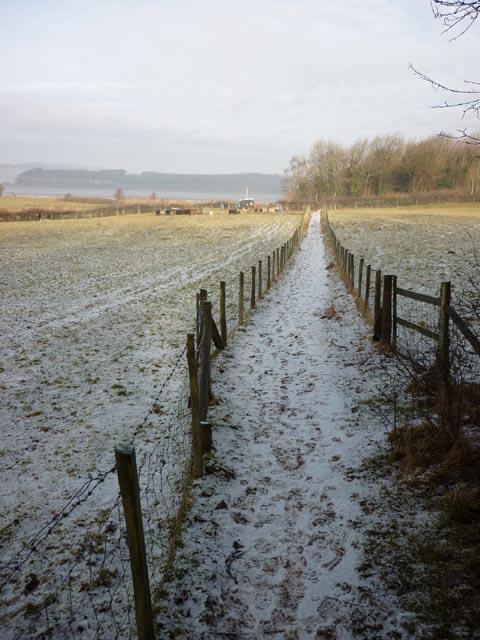 The footpath to Arnside Knott