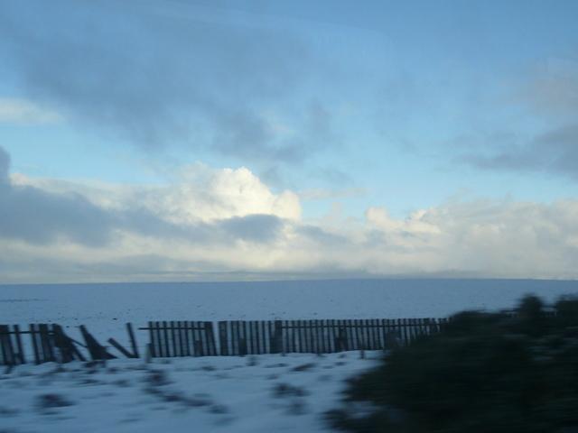 Railway snow fence near Forsinard