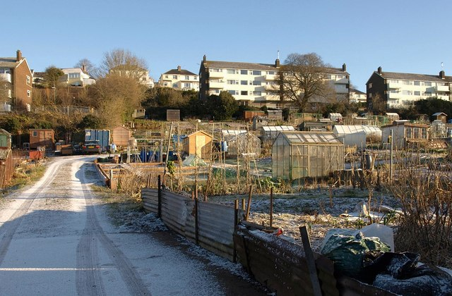 Allotments, Barton Hill Way