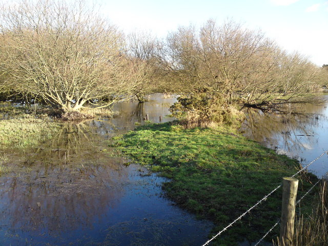 Pond off public footpath towards Hook