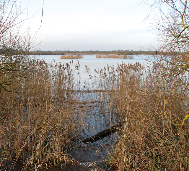 A glimpse of Rockland broad in winter