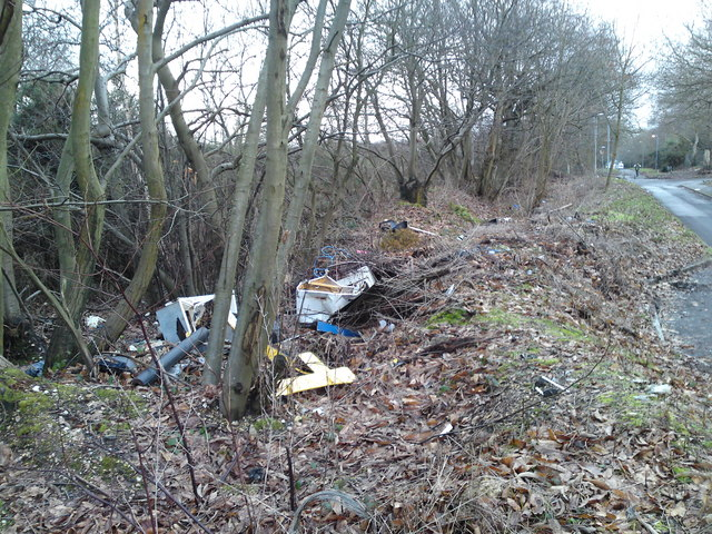 Fly tipping on Botley road