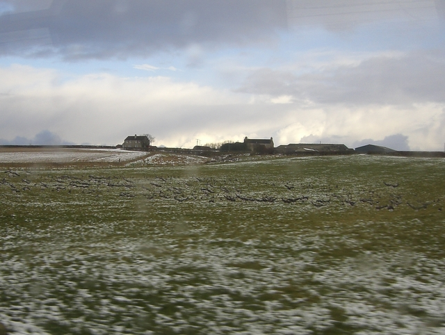 Farm near Sordale