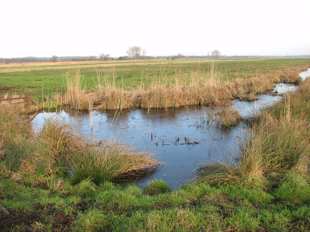 Drainage ditch in pasture south of Short Dike