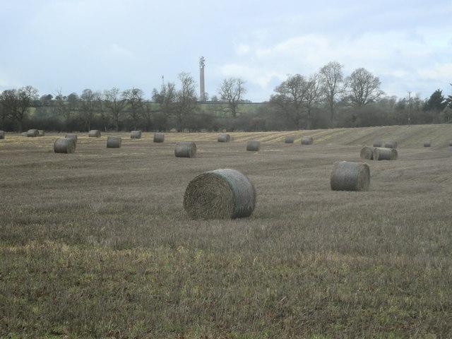 Charwelton Farmland