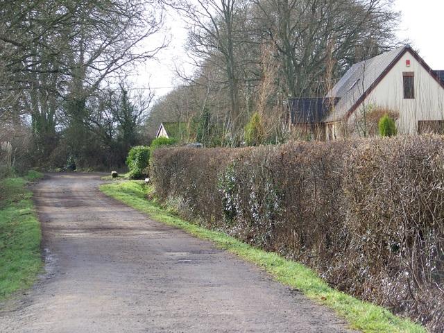 Bridleway, Organford