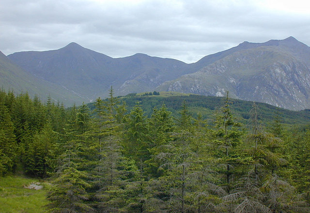 View over the Glen Etive forest