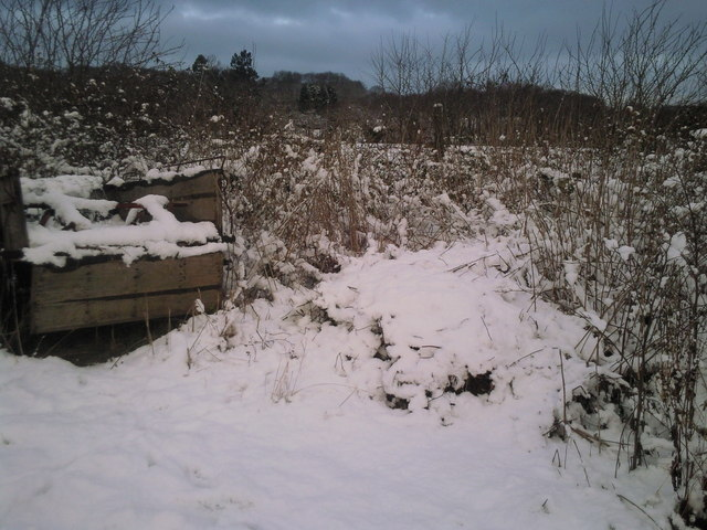 Snowy scene at Woodlands Farm