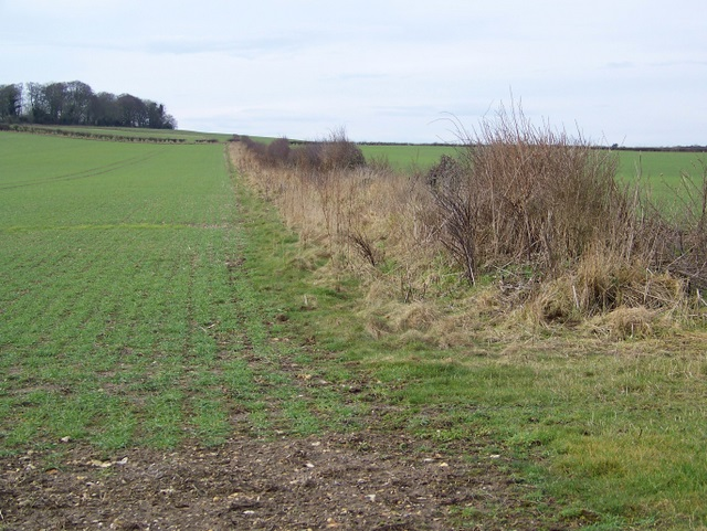 Arable land near Winterborne Tomson